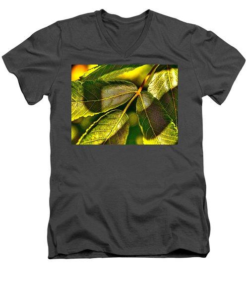 Leaf Texture Men's V-Neck T-Shirt