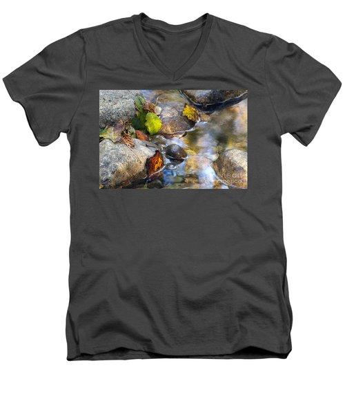 Leaves And Needles Men's V-Neck T-Shirt