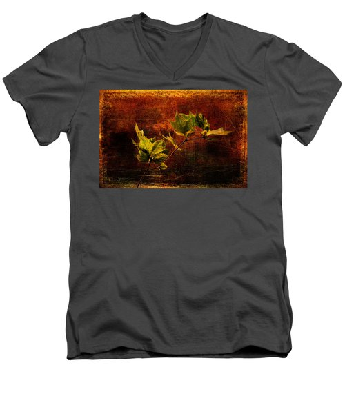Leaves On Texture Men's V-Neck T-Shirt