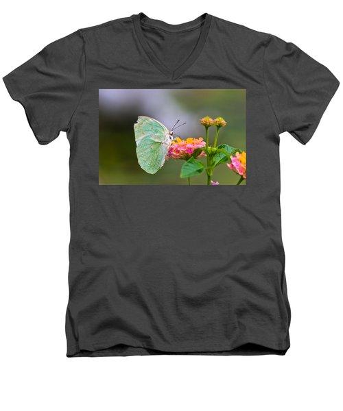 Lemon Emigrant Butterfly Men's V-Neck T-Shirt