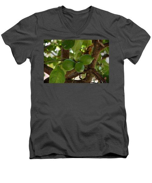 Lemons Trio Men's V-Neck T-Shirt