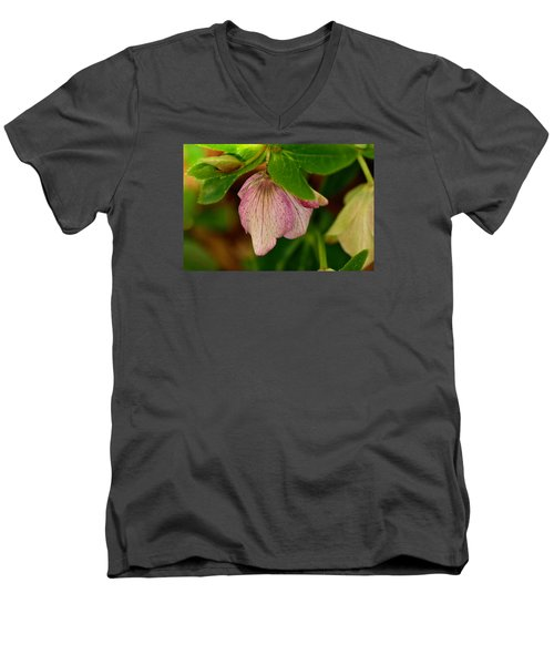 Men's V-Neck T-Shirt featuring the photograph Lenton Rose Of Winter by Larry Bishop