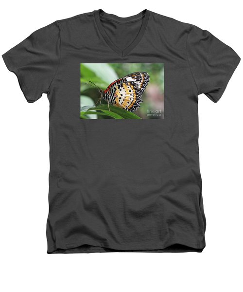 Leopard Lacewing Butterfly Men's V-Neck T-Shirt by Judy Whitton