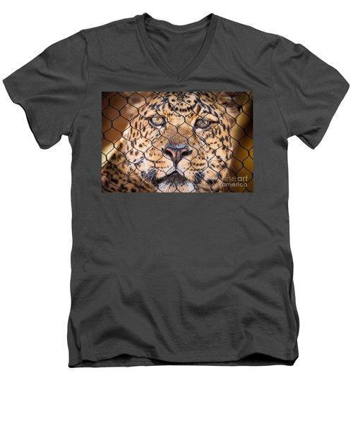 Men's V-Neck T-Shirt featuring the photograph Let Me Out by John Wadleigh