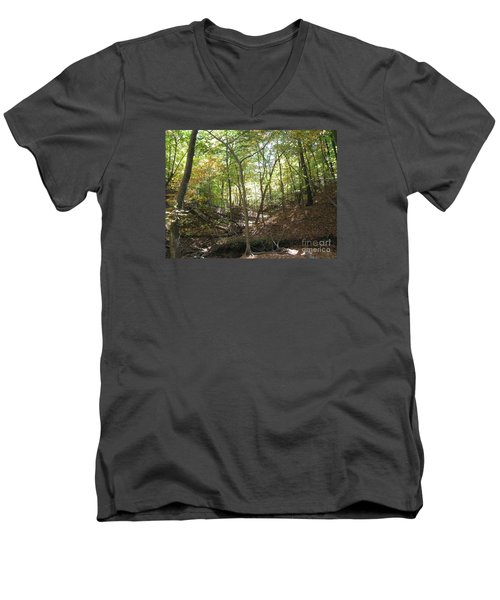 Light And Shadow Through The Forest Men's V-Neck T-Shirt