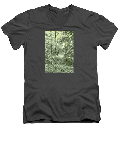 Men's V-Neck T-Shirt featuring the photograph Light Forest Scene by Tom Wurl