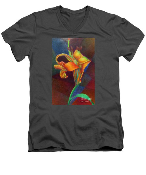 Lily's Rainbow Men's V-Neck T-Shirt
