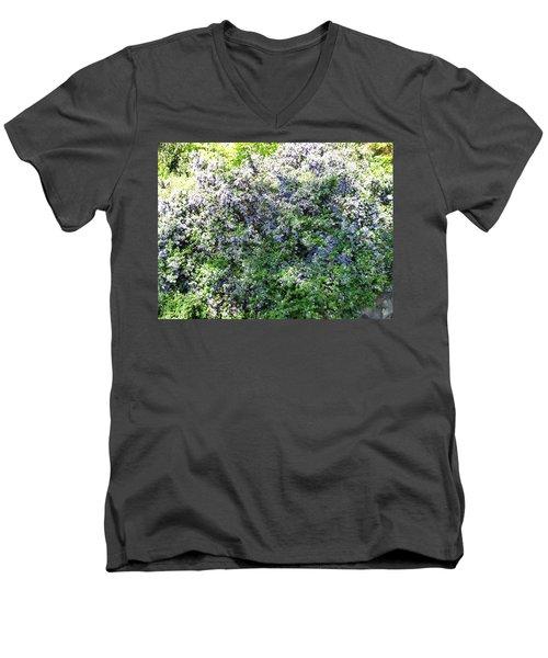 Lincoln Park In Bloom Men's V-Neck T-Shirt by David Trotter