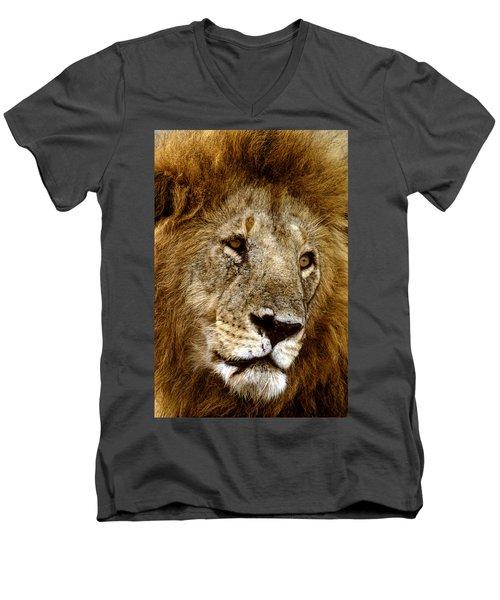 Lion 01 Men's V-Neck T-Shirt by Wally Hampton