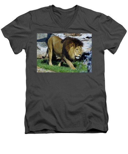 Lion 1 Men's V-Neck T-Shirt