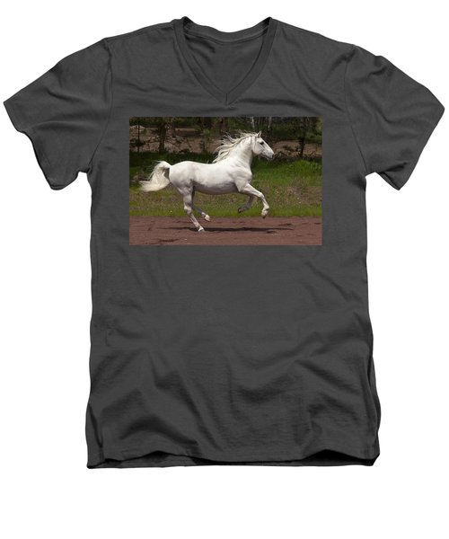 Lipizzan At Liberty Men's V-Neck T-Shirt by Wes and Dotty Weber