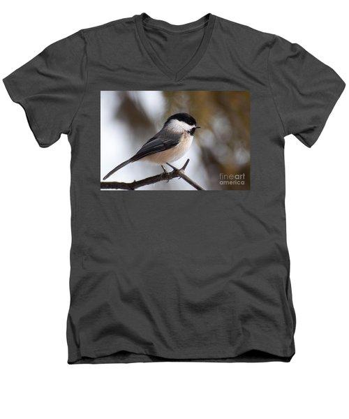 Little Beauty Men's V-Neck T-Shirt