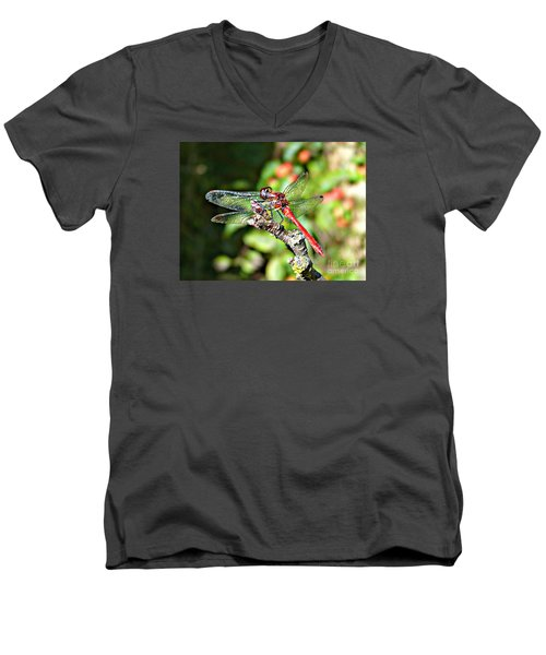 Little Dragonfly Men's V-Neck T-Shirt by Morag Bates
