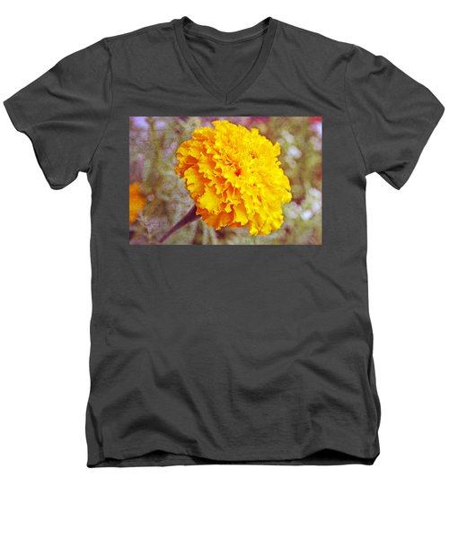 Men's V-Neck T-Shirt featuring the photograph Little Golden  Marigold by Kay Novy