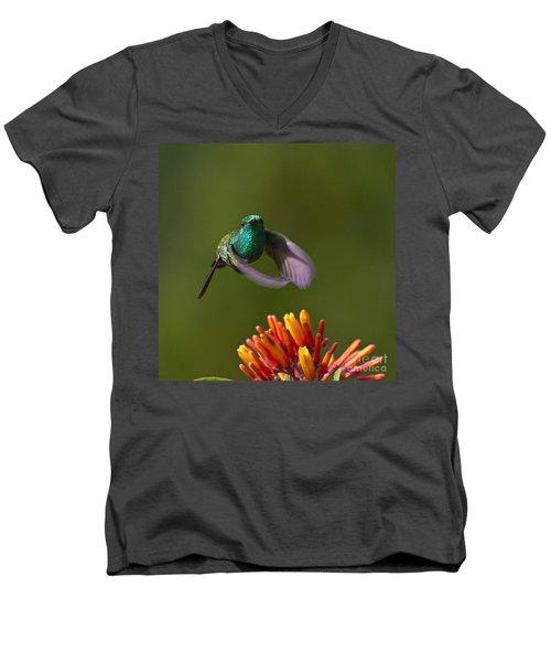 Little Hedgehopper Men's V-Neck T-Shirt by Heiko Koehrer-Wagner