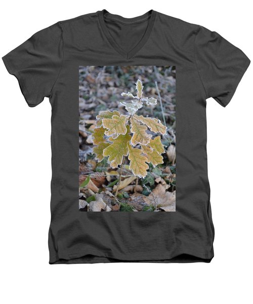 Men's V-Neck T-Shirt featuring the photograph Little Oak by Felicia Tica