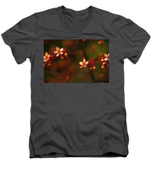 Little Red Flowers Men's V-Neck T-Shirt