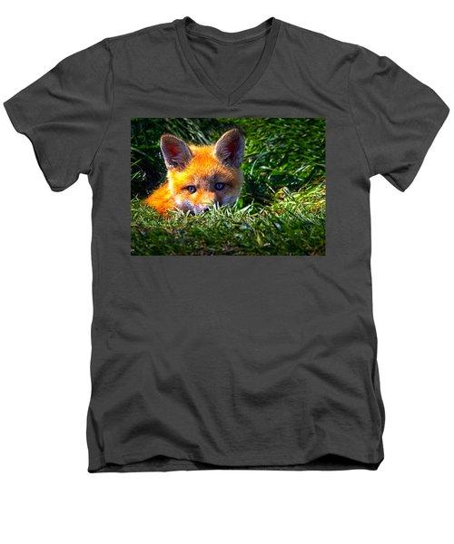 Little Red Fox Men's V-Neck T-Shirt