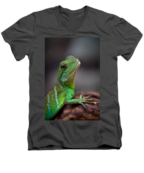 Lizard Men's V-Neck T-Shirt
