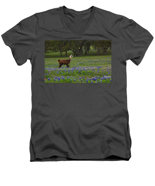 Llama In Bluebonnets Men's V-Neck T-Shirt
