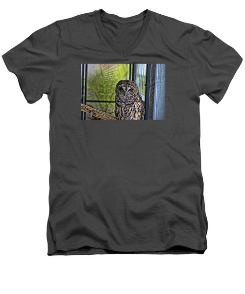 Lonely Owl Men's V-Neck T-Shirt