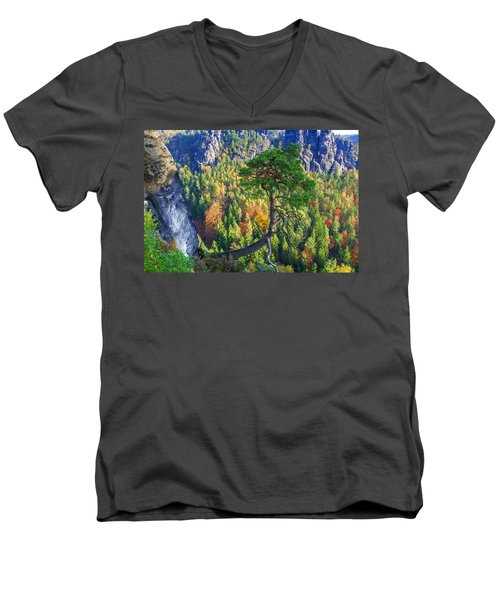 Lonely Tree In The Elbe Sandstone Mountains Men's V-Neck T-Shirt