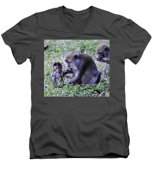 Men's V-Neck T-Shirt featuring the photograph Long Tailed Macaque Family by Shoal Hollingsworth