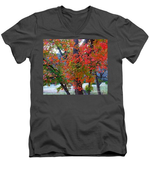 Lost Maples Fall Foliage Men's V-Neck T-Shirt