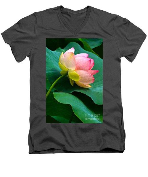Lotus Blossom And Leaves Men's V-Neck T-Shirt