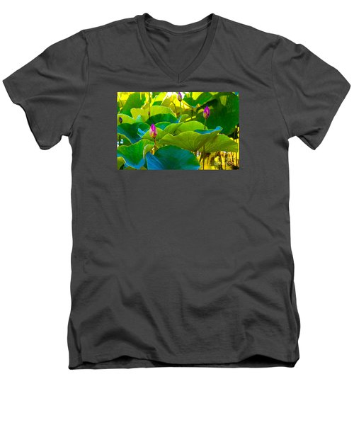Lotus Garden Men's V-Neck T-Shirt