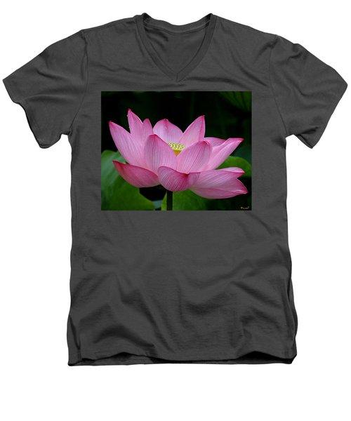 Lotus-center Of Being IIi Dl033 Men's V-Neck T-Shirt