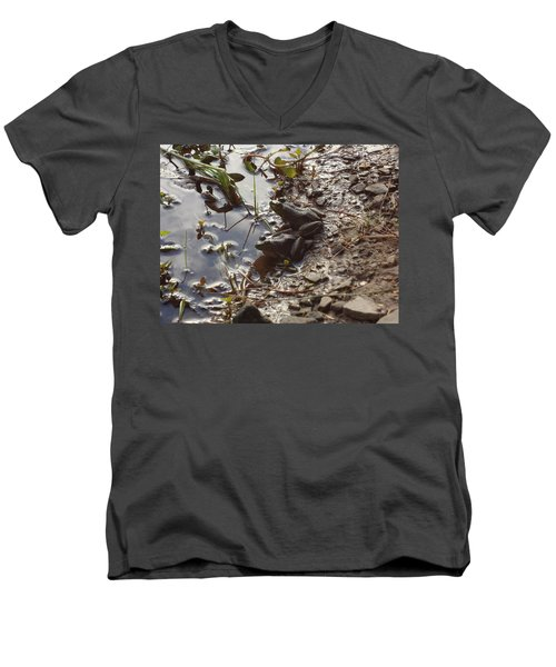 Men's V-Neck T-Shirt featuring the photograph Love Frogs by Michael Porchik