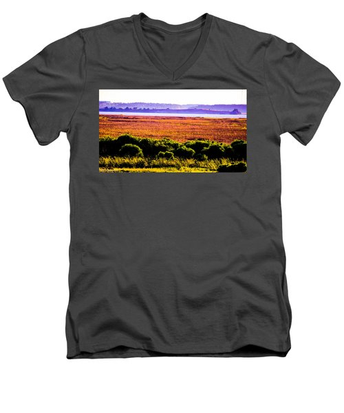 Lowland Light  Men's V-Neck T-Shirt