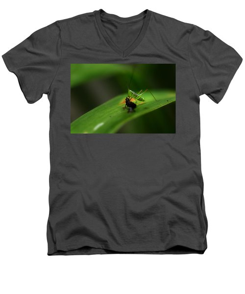 Lunch Time Men's V-Neck T-Shirt by Michael Eingle