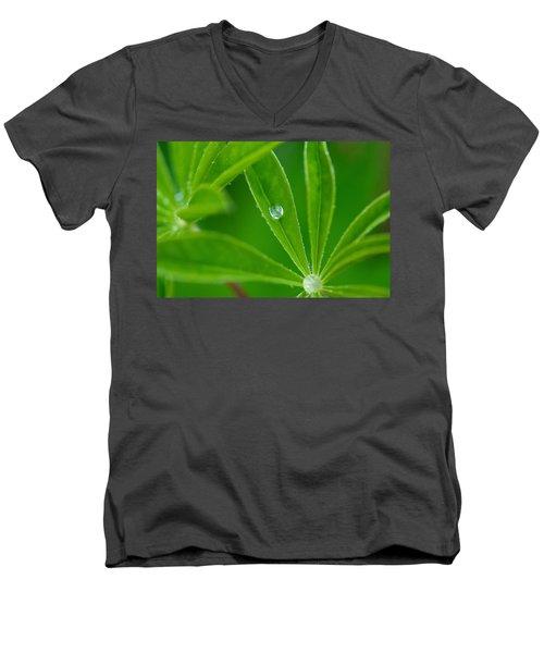 Lupine Dreams Men's V-Neck T-Shirt