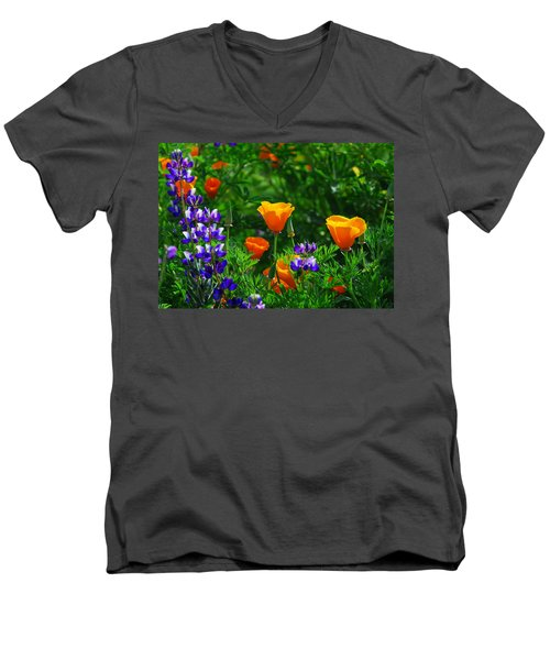 Lupines And Poppies Men's V-Neck T-Shirt by Lynn Bauer