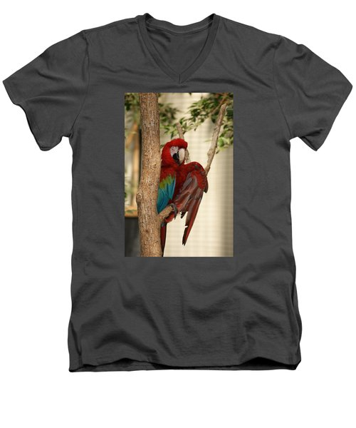 Men's V-Neck T-Shirt featuring the photograph Maccraw  by Heidi Poulin