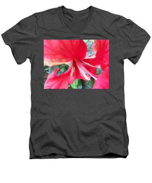 Macro Beauty Men's V-Neck T-Shirt