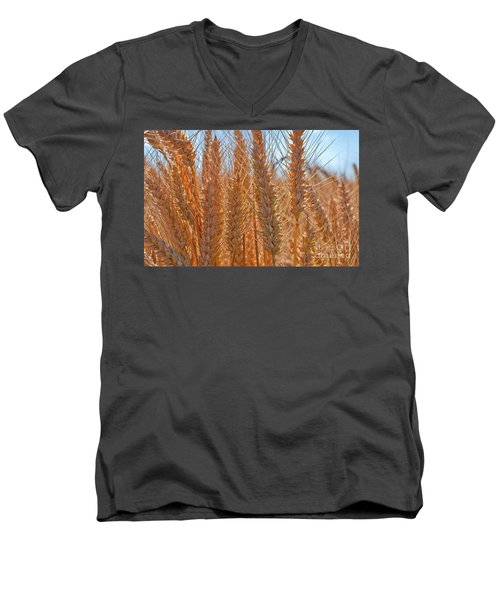 Men's V-Neck T-Shirt featuring the photograph Macro Of Wheat Art Prints by Valerie Garner