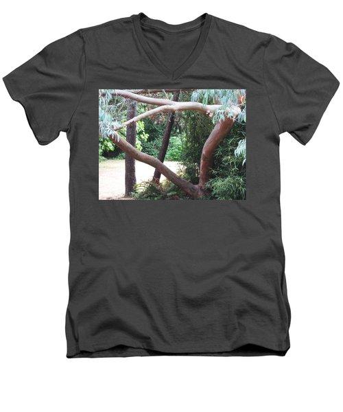 Madrona Men's V-Neck T-Shirt by David Trotter