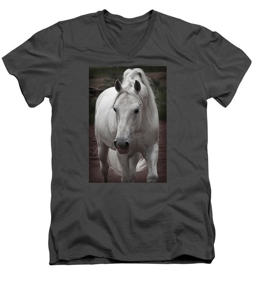 Maestoso II Ambrosia Men's V-Neck T-Shirt by Wes and Dotty Weber
