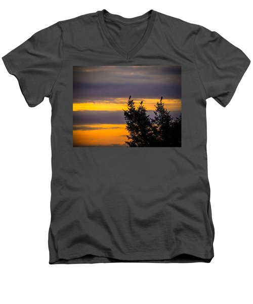 Magpies At Sunrise Men's V-Neck T-Shirt