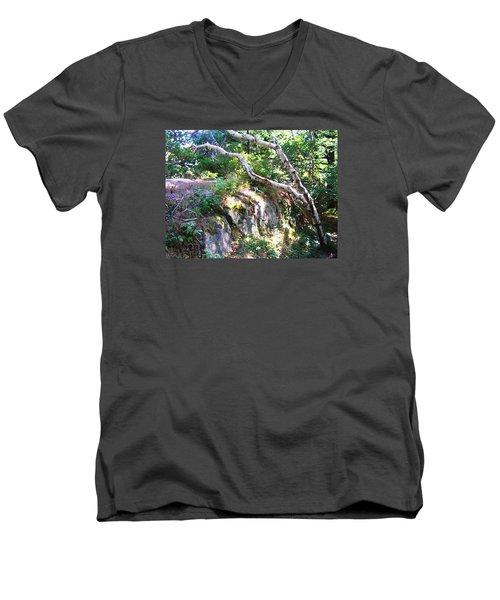 Maine Men's V-Neck T-Shirt by Oleg Zavarzin
