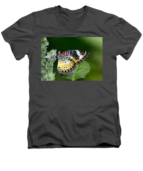 Malay Lacewing Butterfly Men's V-Neck T-Shirt