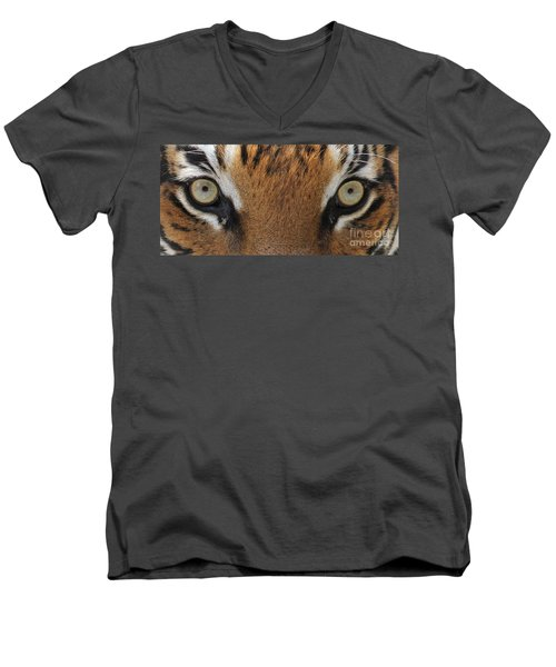 Malayan Tiger Eyes Men's V-Neck T-Shirt
