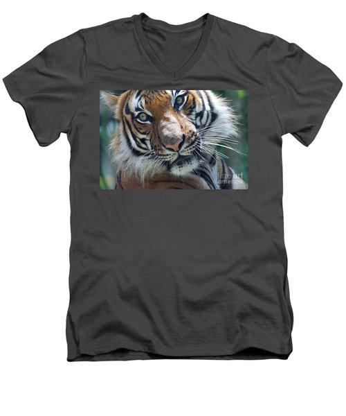 Malayan Tiger Men's V-Neck T-Shirt
