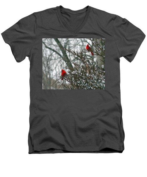 Male Cardinal Pair Men's V-Neck T-Shirt