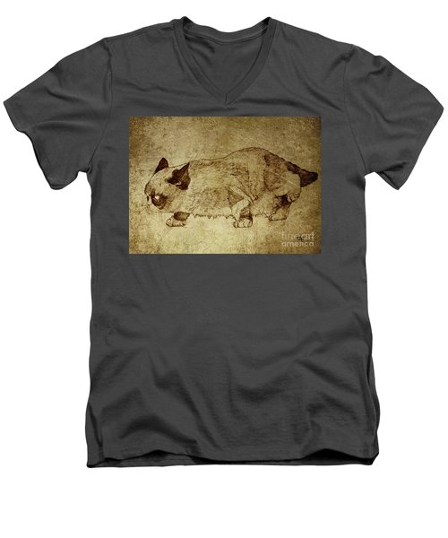 Male Cat Hunts At Night Men's V-Neck T-Shirt by Daniel Yakubovich