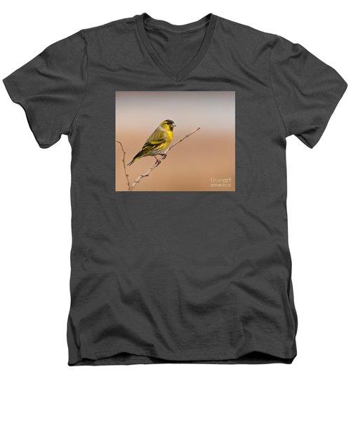 Male Eurasian Siskin Men's V-Neck T-Shirt