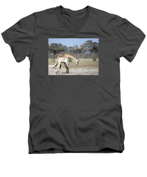 Men's V-Neck T-Shirt featuring the photograph Male Giraffes Necking by Liz Leyden